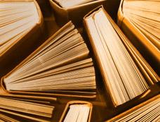 literature[1].jpg